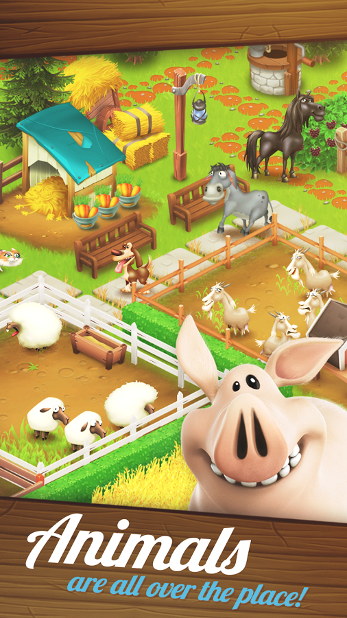 Hay Day3