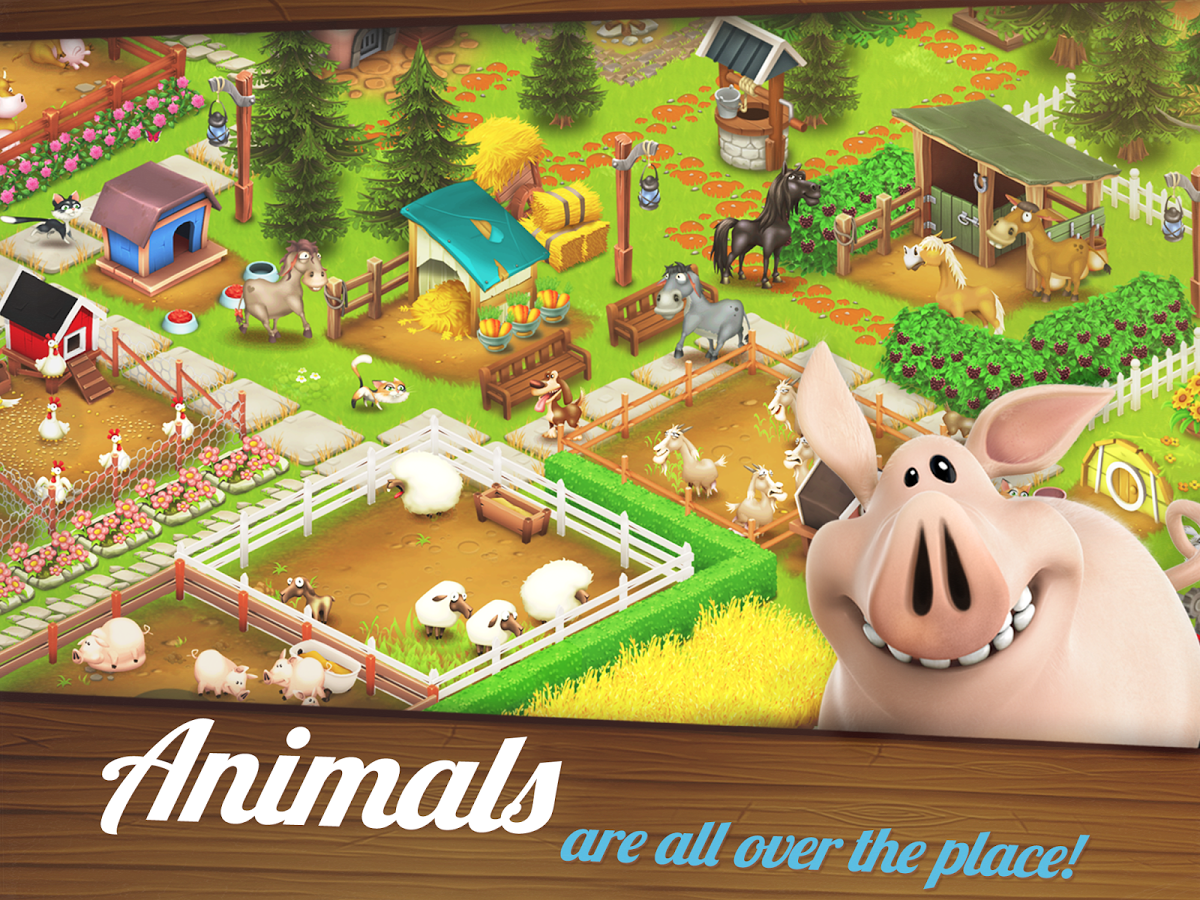 Hay Day9